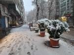Diyarbakır'da yılın ilk karı, yaşamı olumsuz etkiledi